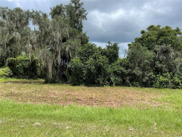 465 Long And Winding Road, Groveland, FL 34737 (MLS #O5971044) :: Gate Arty & the Group - Keller Williams Realty Smart