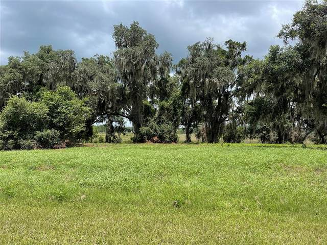 469 Long And Winding Road, Groveland, FL 34737 (MLS #O5971046) :: Gate Arty & the Group - Keller Williams Realty Smart