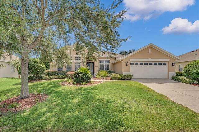 2515 Prairie View Drive, Winter Garden, FL 34787 (MLS #O5971062) :: Zarghami Group