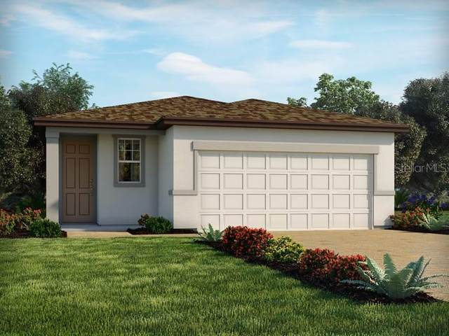 3833 Shoveler Avenue, Leesburg, FL 34748 (MLS #O5971200) :: Vacasa Real Estate