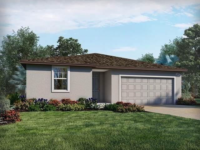 6139 Schalekamp Drive, Spring Hill, FL 34609 (MLS #O5971204) :: Everlane Realty