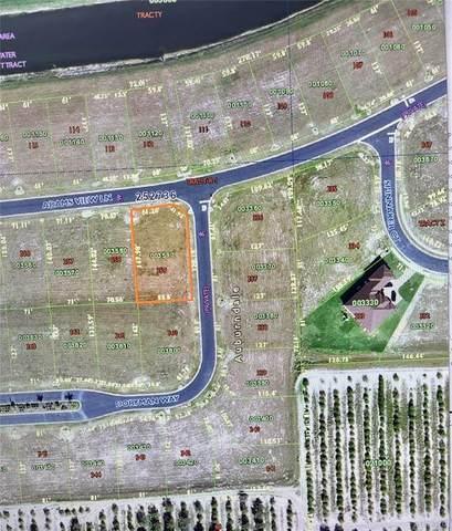 359 Adams View Lane, Auburndale, FL 33823 (MLS #O5971464) :: Vacasa Real Estate