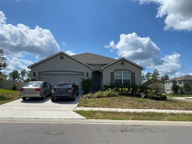 201 Wood Hollow Road, Deland, FL 32724 (MLS #O5971505) :: Bridge Realty Group