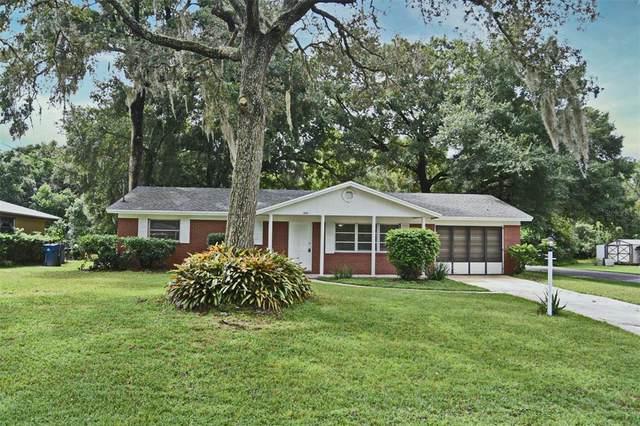 280 W Holly Drive, Orange City, FL 32763 (MLS #O5971600) :: Cartwright Realty