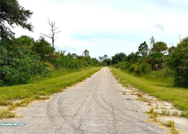 Fiveleaf Road, North Port, FL 34288 (MLS #O5971819) :: GO Realty