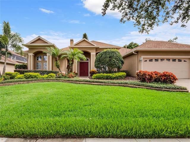 8213 Lynch Drive, Orlando, FL 32835 (MLS #O5971915) :: The Robertson Real Estate Group