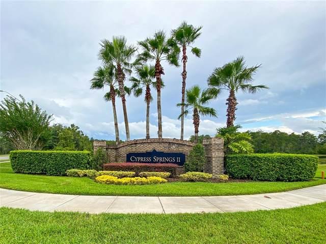 1467 Amaryllis Circle, Orlando, FL 32825 (MLS #O5971976) :: Cartwright Realty
