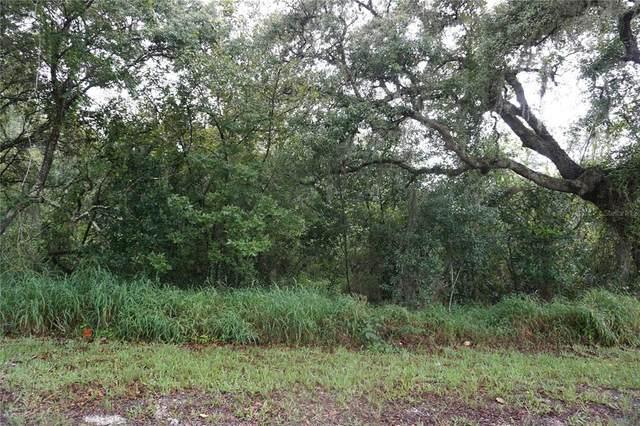 3196 N Pocatello Road, Avon Park, FL 33825 (MLS #O5972075) :: The Hustle and Heart Group