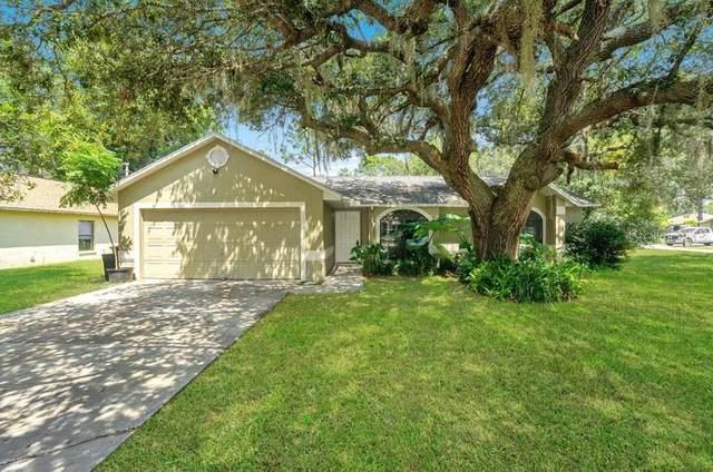 3356 Ronald Street, Deltona, FL 32738 (MLS #O5972086) :: Carmena and Associates Realty Group