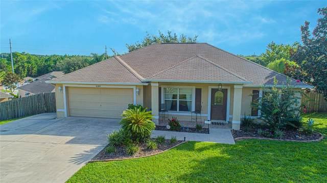 14309 Sanhatchee Street, Clermont, FL 34711 (MLS #O5972161) :: Everlane Realty