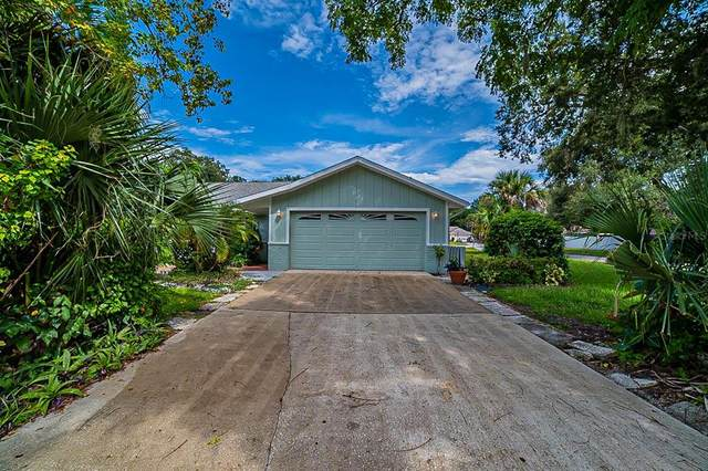 911 Sandle Wood Drive, Port Orange, FL 32127 (MLS #O5972204) :: American Premier Realty LLC