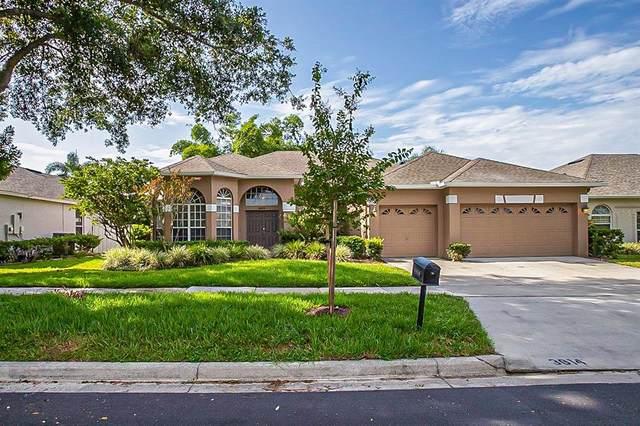 3614 Half Moon Drive, Orlando, FL 32812 (MLS #O5972206) :: Zarghami Group