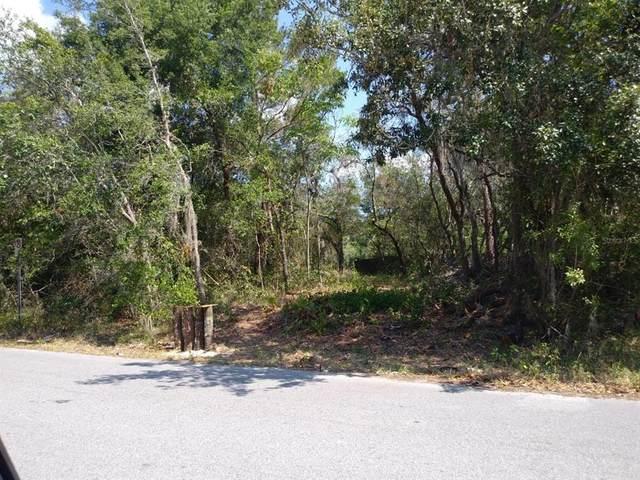 Terra Ceia Avenue, New Port Richey, FL 34654 (MLS #O5972209) :: Vacasa Real Estate