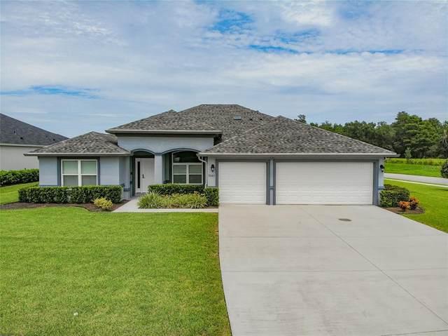 3003 Silvermines Avenue, Ormond Beach, FL 32174 (MLS #O5972319) :: Pepine Realty