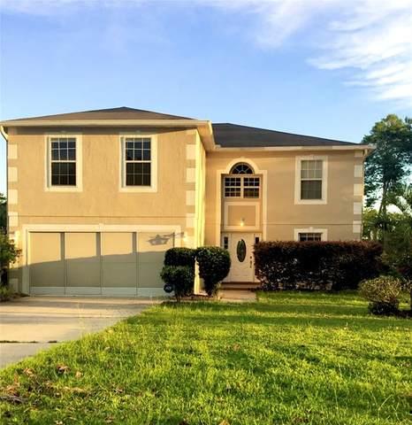 3890 SW 110TH Lane, Ocala, FL 34476 (MLS #O5972362) :: RE/MAX Elite Realty