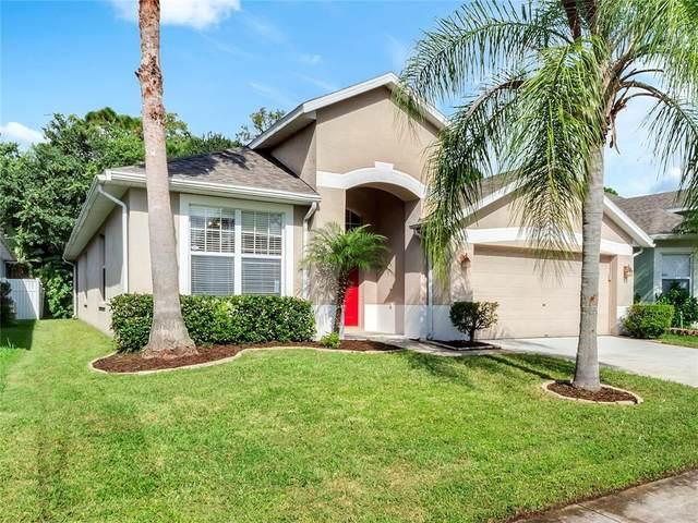 2252 Cypress Trace Circle, Orlando, FL 32825 (MLS #O5972459) :: Zarghami Group