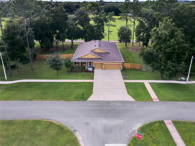 30241 Plymouth Creek Circle, Sorrento, FL 32776 (MLS #O5972469) :: American Premier Realty LLC
