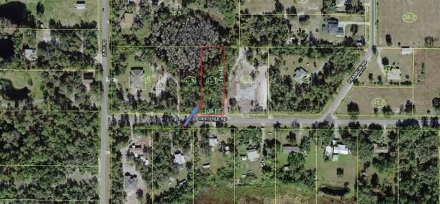 Oesterle, Saint Cloud, FL 34771 (MLS #O5972524) :: Zarghami Group