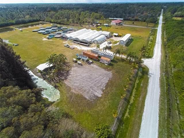 13706 Murcott Avenue, Clewiston, FL 33440 (MLS #O5972570) :: Vacasa Real Estate