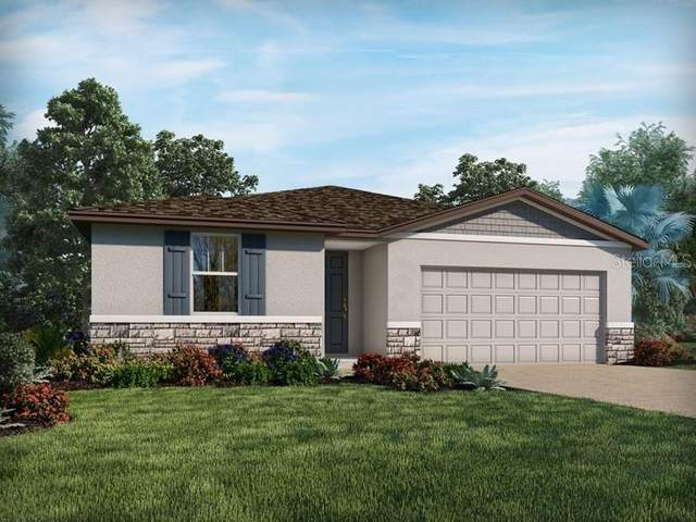 17304 Cagan Crossings Boulevard, Clermont, FL 34714 (MLS #O5972703) :: Zarghami Group