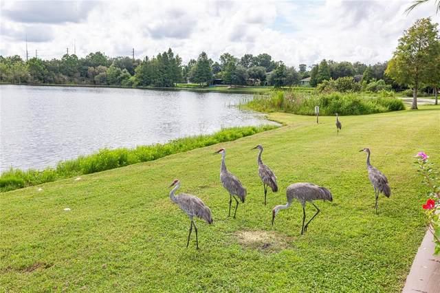 1817 Lakelet Loop, Oviedo, FL 32765 (MLS #O5972719) :: Zarghami Group