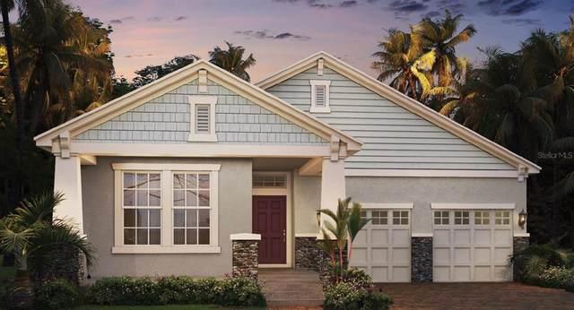 15556 Mango Isle Street, Winter Garden, FL 34787 (MLS #O5972862) :: Zarghami Group