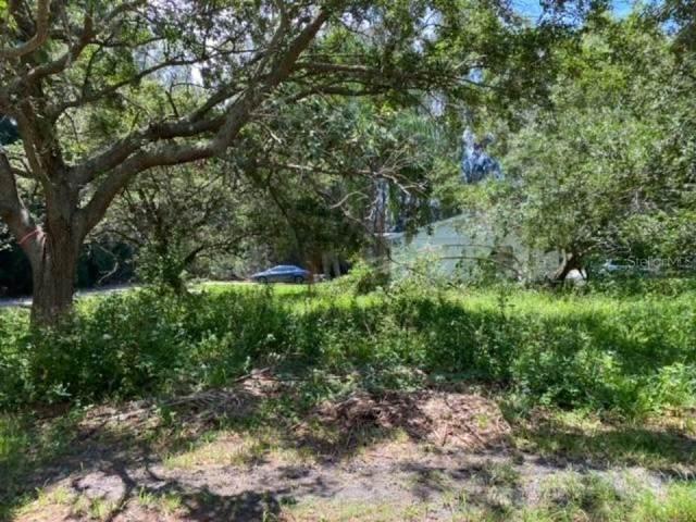 48TH Street N, Clearwater, FL 33762 (MLS #O5973008) :: Cartwright Realty