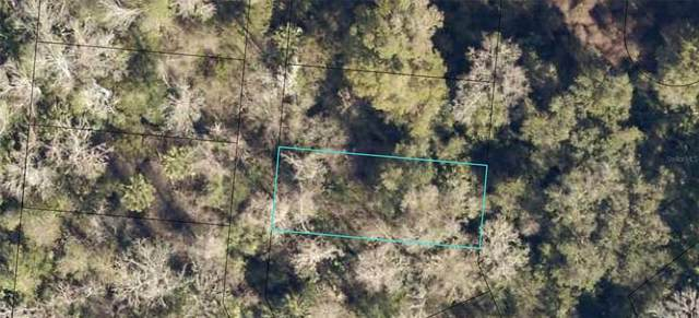 6291 W Magnolia Drive, Saint Augustine, FL 32095 (MLS #O5973236) :: Rabell Realty Group