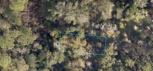 6325 W Magnolia Drive, Saint Augustine, FL 32095 (MLS #O5973238) :: Rabell Realty Group