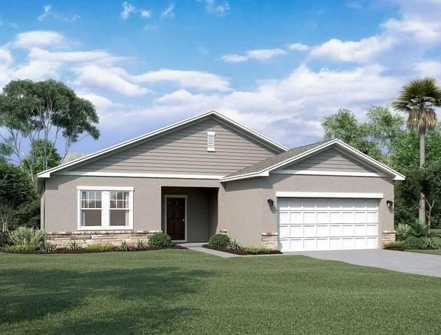 1429 Bluejack Oak, Seffner, FL 33584 (MLS #O5973292) :: Kreidel Realty Group, LLC
