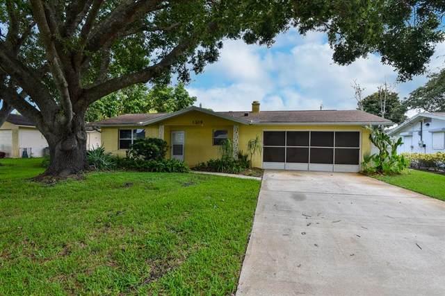 1309 Sunland Road, Daytona Beach, FL 32114 (MLS #O5973301) :: Cartwright Realty
