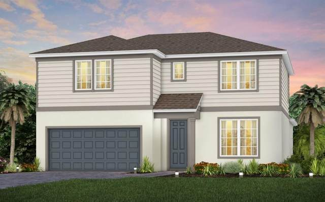 17663 Saw Palmetto Avenue, Clermont, FL 34714 (MLS #O5973372) :: Cartwright Realty