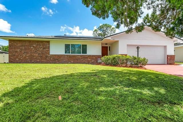 3023 Saratoga Drive, Orlando, FL 32806 (MLS #O5973382) :: Everlane Realty