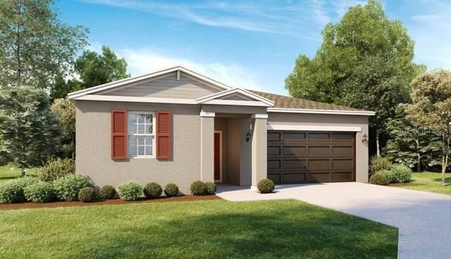 29571 Caspian Street, Leesburg, FL 34748 (MLS #O5973452) :: Vacasa Real Estate