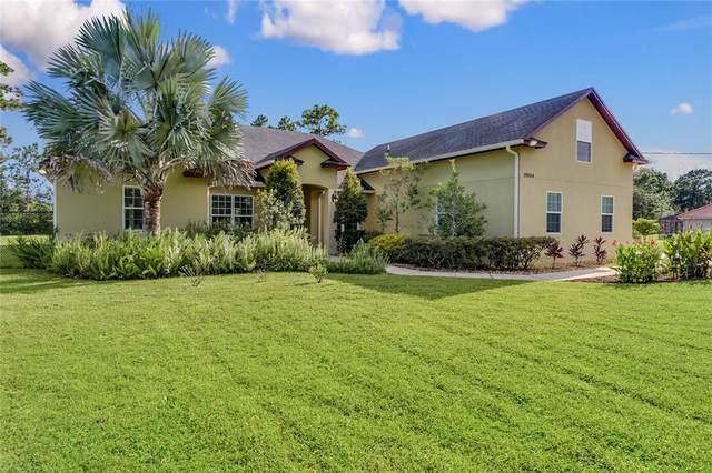 19344 Moorgate Street, Orlando, FL 32833 (MLS #O5973536) :: Zarghami Group
