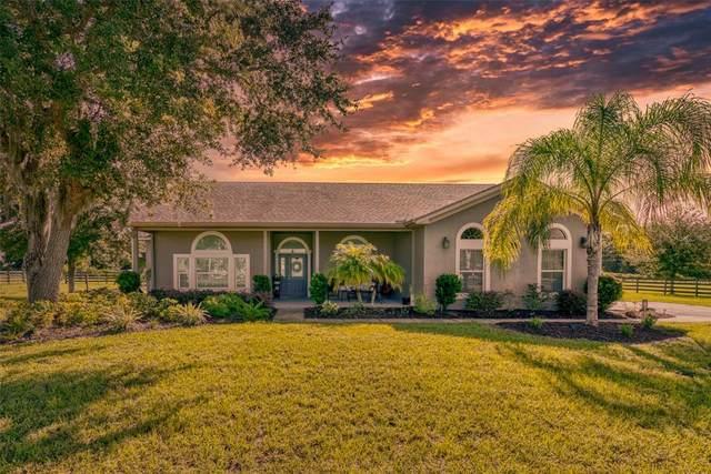 3317 Steeplechase Lane, Kissimmee, FL 34746 (MLS #O5973544) :: Pristine Properties