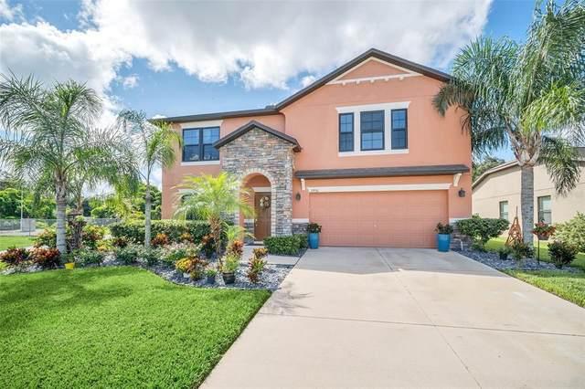 2950 Orangebud Drive, Kissimmee, FL 34746 (MLS #O5973545) :: Pristine Properties