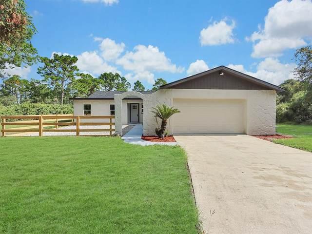 30109 Coconut Avenue, Eustis, FL 32736 (MLS #O5973551) :: Team Bohannon