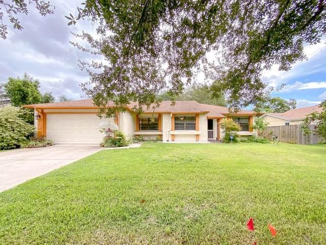 113 S Deerwood Avenue, Orlando, FL 32825 (MLS #O5973562) :: Cartwright Realty