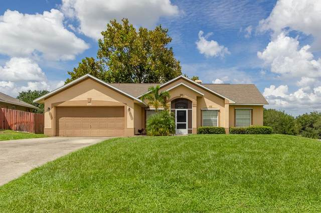 11739 Clair Place, Clermont, FL 34711 (MLS #O5973769) :: Expert Advisors Group