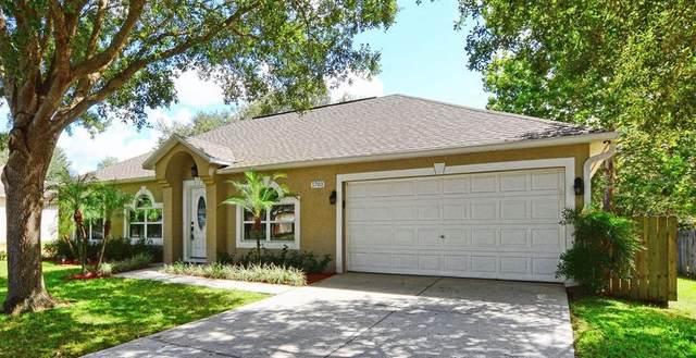 1703 S Mary Street, Eustis, FL 32726 (MLS #O5973775) :: Expert Advisors Group