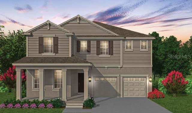 8881 Sonoma Coast Drive, Winter Garden, FL 34787 (MLS #O5973848) :: Zarghami Group