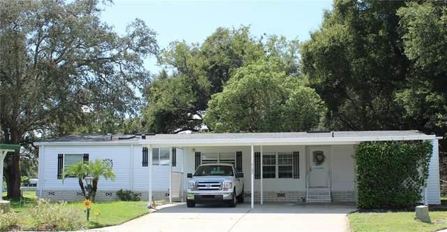 4162 Greenbluff Court #784, Zellwood, FL 32798 (MLS #O5973939) :: Everlane Realty
