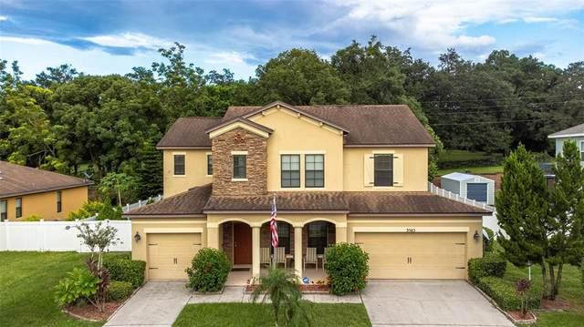 3565 Chandler Estates Drive, Apopka, FL 32712 (MLS #O5973998) :: Expert Advisors Group