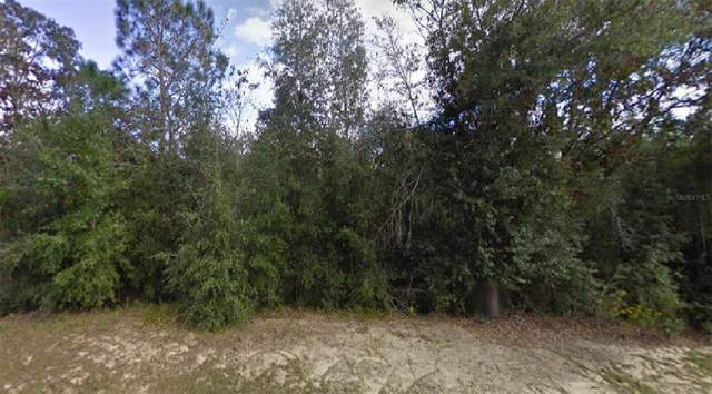 Ring Place, Chipley, FL 32428 (MLS #O5974088) :: Everlane Realty