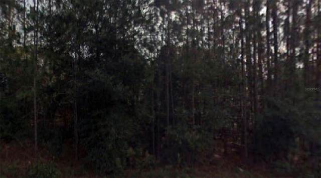 SW Marine Boulevard, Dunnellon, FL 34431 (MLS #O5974098) :: The Hustle and Heart Group