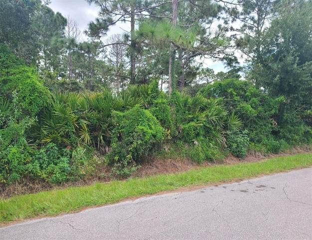 33068 Grand Prix Drive, Sebring, FL 33872 (MLS #O5974099) :: Vacasa Real Estate