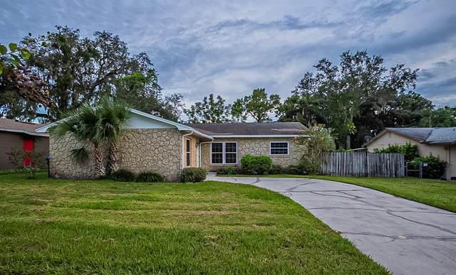 3210 Calumet Drive, Orlando, FL 32810 (MLS #O5974142) :: Lockhart & Walseth Team, Realtors