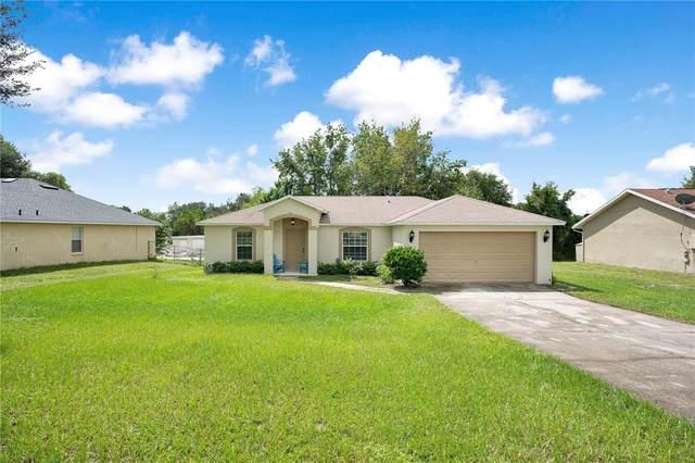 1931 Lavina Street, Deltona, FL 32738 (MLS #O5974219) :: Cartwright Realty