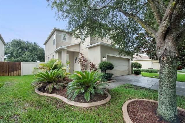 9711 Simeon Drive, Land O Lakes, FL 34638 (MLS #O5974334) :: Cartwright Realty